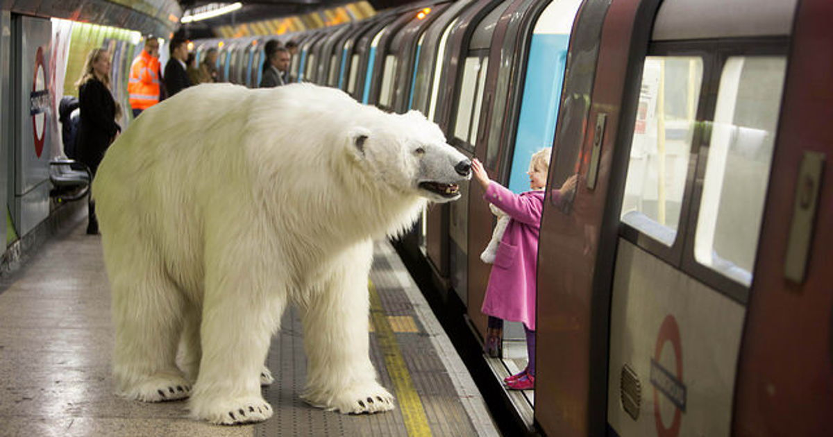polar-bear-in-london1.jpg